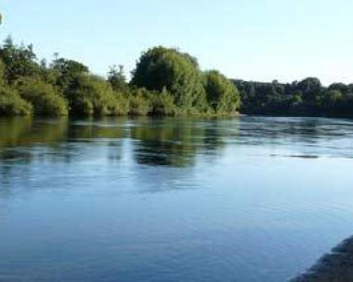 Photo of the Waikato River. a major landmark of the Waikato region